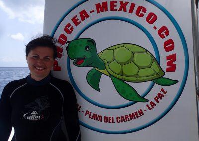 Phocea Mexico: Une valeur sûre